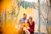 Truckee fall family mini session